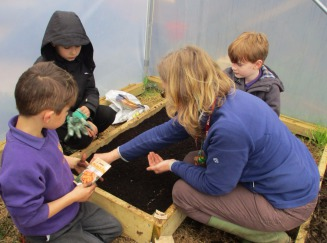 1 adult and 3 Children planting seeds in the poly tunnel