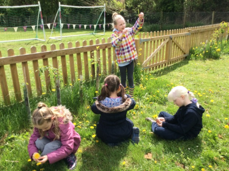 4 girls making flower chains, sitting on the grass